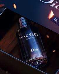 عطر مردانه دیور ساواج مدل 2018 Dior Sauvage